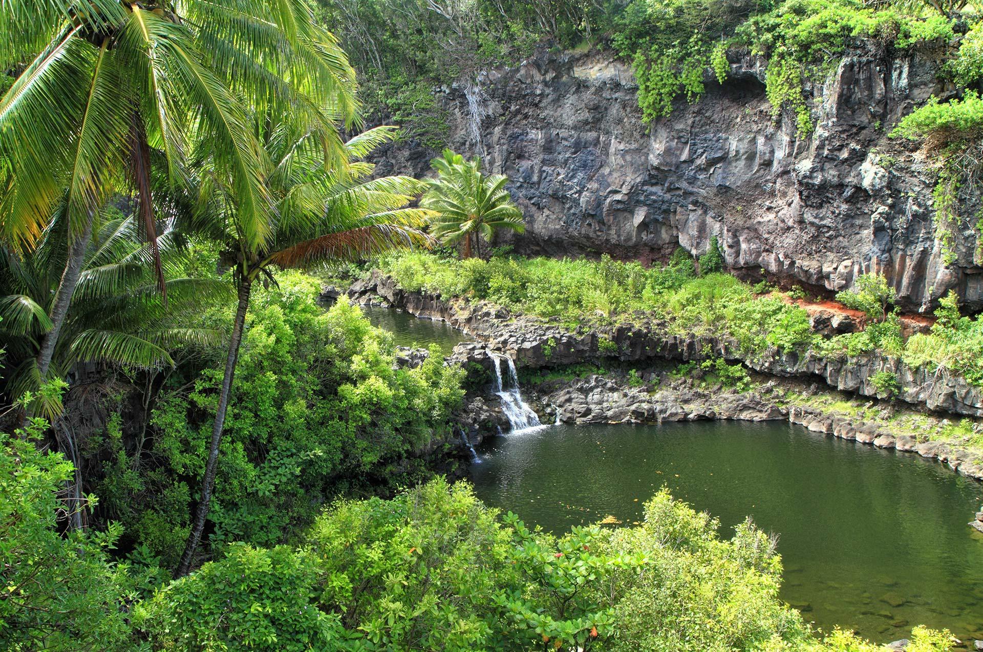 Sailing Big Island Hawaii
