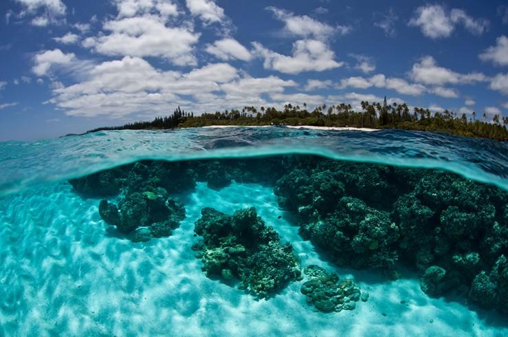 Cook Islands New Caledonia Fidji